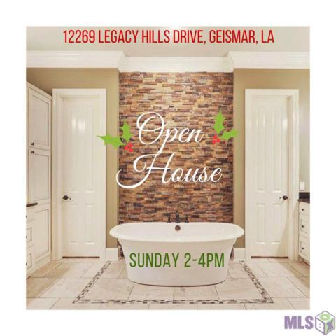 12269 Legacy Hills Dr, Geismar, LA 70734 (#2017018811) :: Smart Move Real Estate