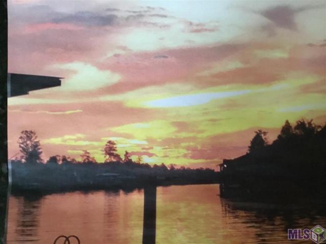 20940 Diversion Canal Rd, Maurepas, LA 70449 (#2018003322) :: Smart Move Real Estate