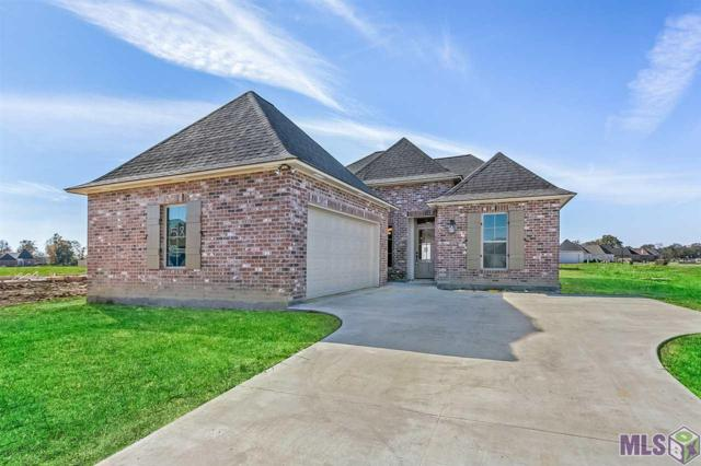 17205 Herringbone Dr, Prairieville, LA 70769 (#2018009506) :: The W Group with Berkshire Hathaway HomeServices United Properties