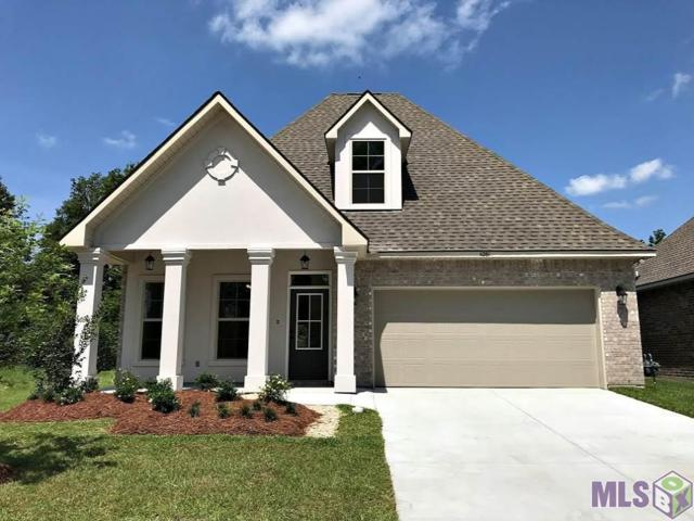 11261 Admirable Oaks Ave, Gonzales, LA 70737 (#2019002845) :: Patton Brantley Realty Group