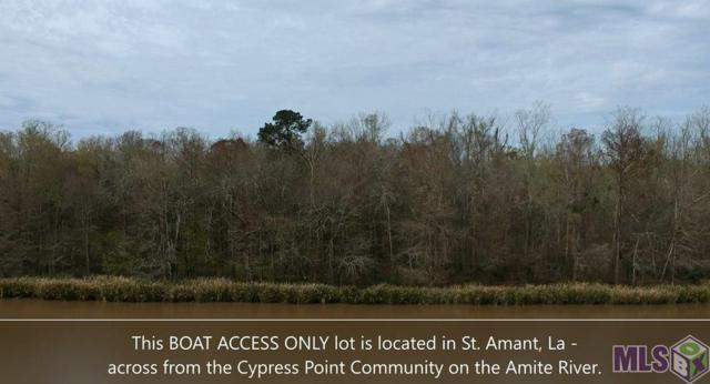 TBD Amite River Access Only, St Amant, LA 70774 (#2019003217) :: Patton Brantley Realty Group