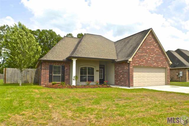14074 Serenity Cove Dr, Gonzales, LA 70737 (#2019006495) :: The W Group with Berkshire Hathaway HomeServices United Properties