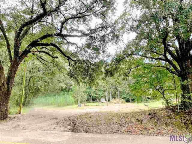 17025 E Swamp Rd, Prairieville, LA 70769 (#2020015104) :: Smart Move Real Estate