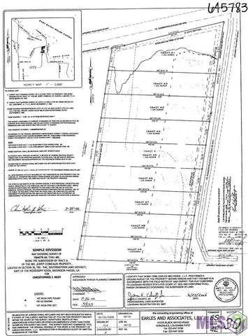 LOT A-5 Summerfield South Rd, Prairieville, LA 70769 (#2021000645) :: Darren James & Associates powered by eXp Realty