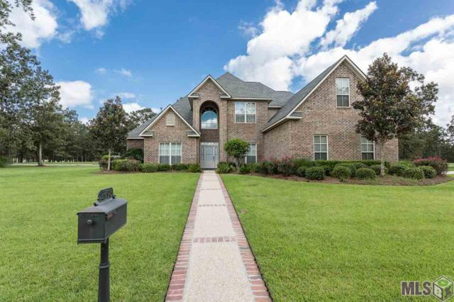23796 Iris Lake Ln, Springfield, LA 70462 (#2016013240) :: Darren James & Associates powered by eXp Realty