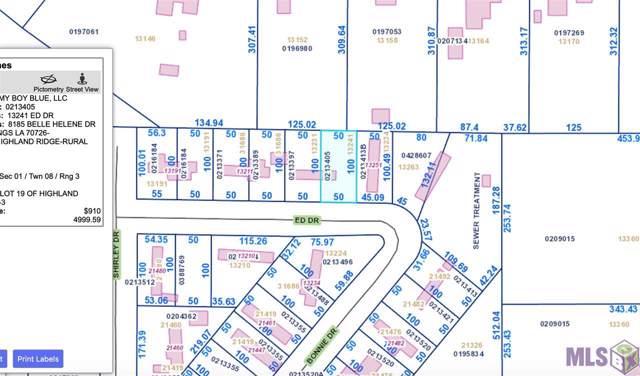 13241 Ed Dr, Denham Springs, LA 70726 (#2019009335) :: Darren James & Associates powered by eXp Realty