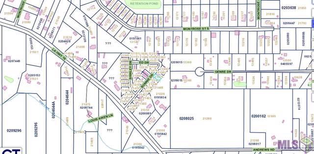 21460 Bonnie Dr, Denham Springs, LA 70726 (#2019009362) :: Darren James & Associates powered by eXp Realty