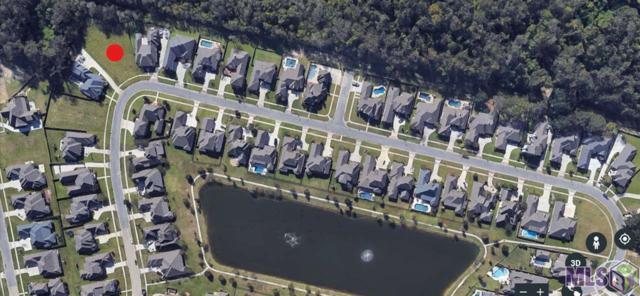 14550 Oak Path Ave, Prairieville, LA 70769 (#2018003590) :: Smart Move Real Estate