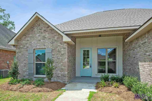 14057 Garden Cove Ct, Gonzales, LA 70737 (#2019007719) :: Darren James & Associates powered by eXp Realty