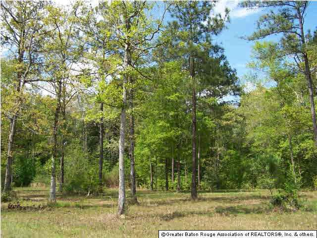 LOT 23 Highpoint Dr, Tickfaw, LA 70401 (#201201915) :: Patton Brantley Realty Group