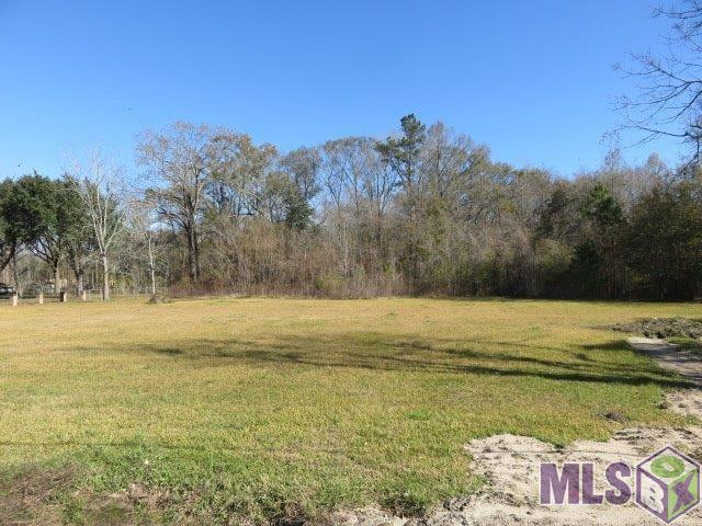 Lot W-2 Airline Hwy - Photo 1