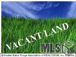 Lot#6E Lake Martin Rd, St Amant, LA 70774 (#2017007006) :: Darren James Real Estate Experts, LLC