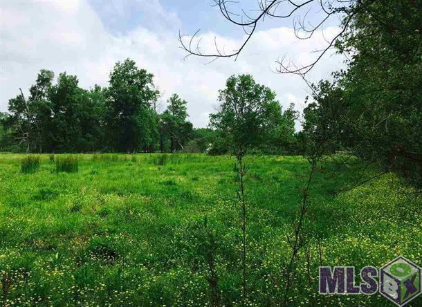 37071 Miller Rd - Photo 1