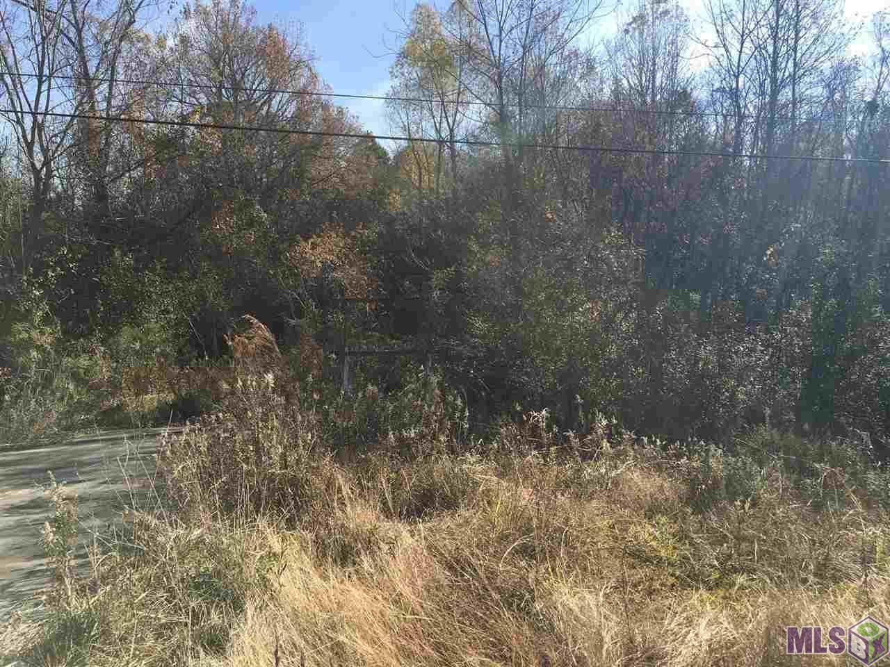 4055 Jones Creek Rd - Photo 1