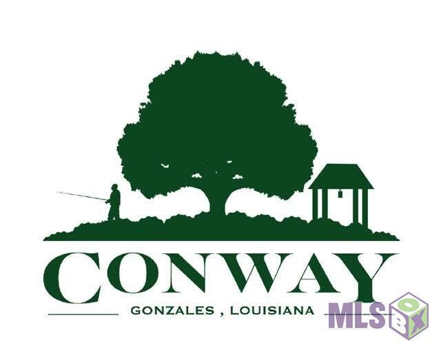 36 Conway Village Blvd, Gonzales, LA 70737 (#2018002728) :: Darren James & Associates powered by eXp Realty