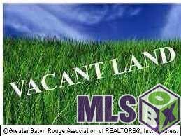 12137 Lazy Oaks Dr, Baker, LA 70714 (#2018003356) :: Smart Move Real Estate
