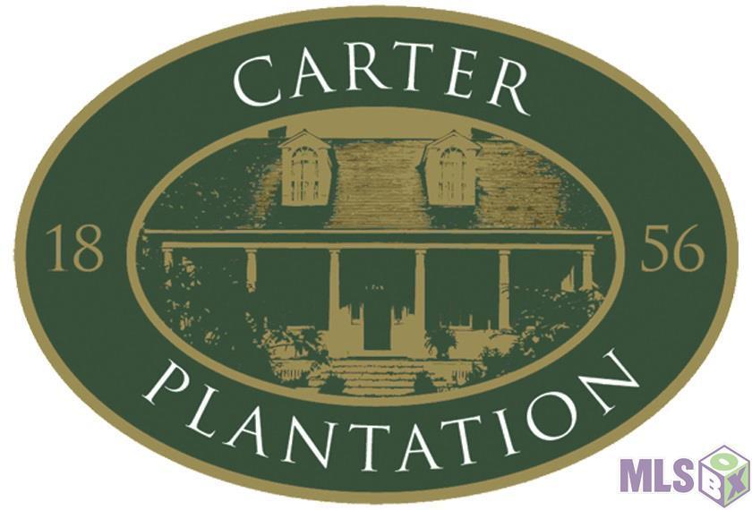 Lot 31 Carter Trace - Photo 1
