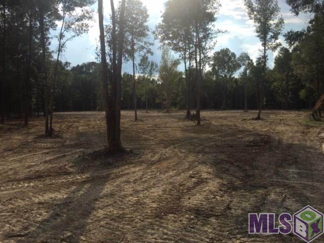 13380 Greenwell Springs-Port Hudson Rd, Central, LA 70770 (#2018019580) :: The W Group with Berkshire Hathaway HomeServices United Properties
