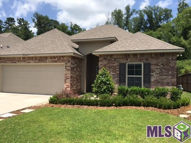 25394 Lake Providence Dr, Denham Springs, LA 70726 (#2019003261) :: Darren James & Associates powered by eXp Realty