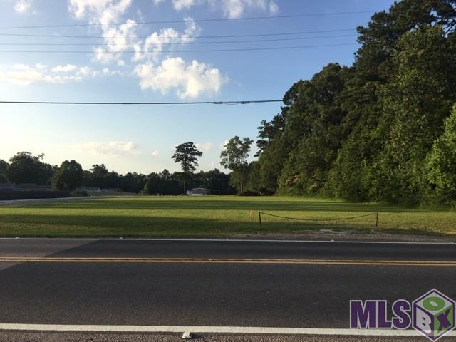 Tract W-2-A-2 Hwy 42, Livingston, LA 70754 (#2019010783) :: The W Group with Berkshire Hathaway HomeServices United Properties