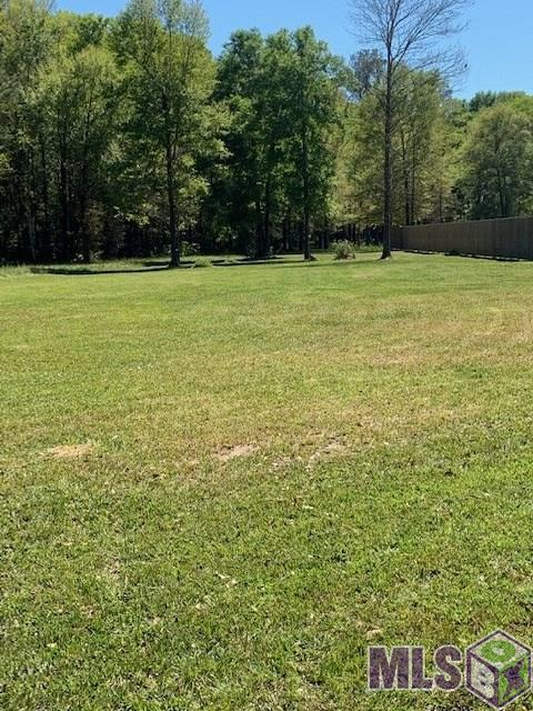 Lot X-1-D Leblanc Ln, Walker, LA 70785 (#2019014144) :: The W Group with Berkshire Hathaway HomeServices United Properties