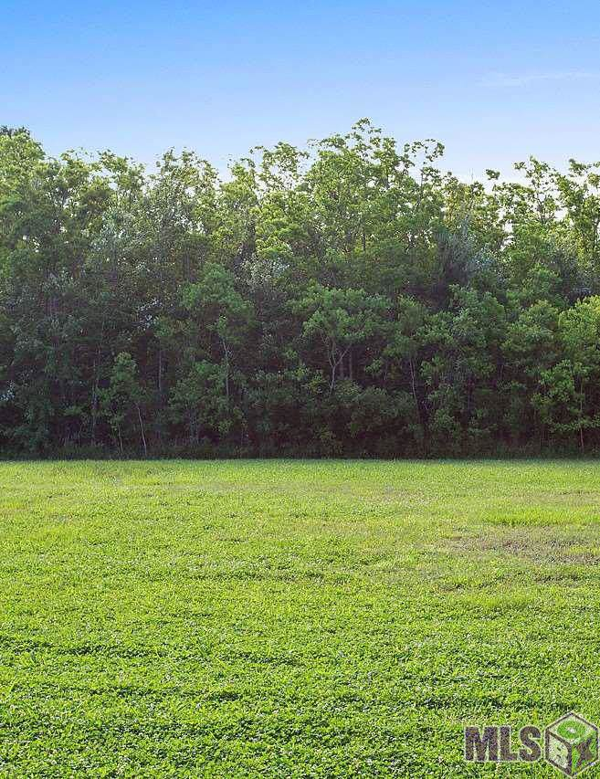 182 Sawgrass Blvd - Photo 1