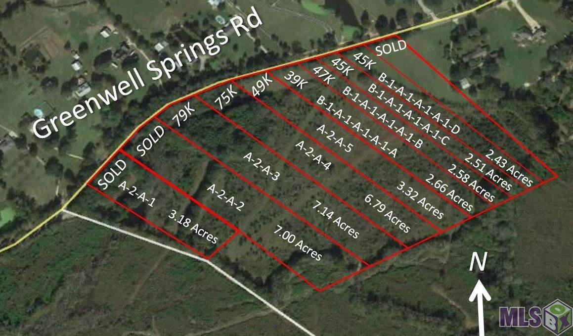 Lot D Greenwell Springs Rd - Photo 1