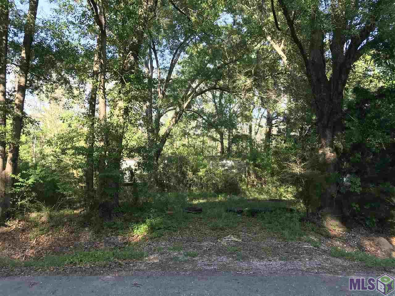 18620 Manchac Point Rd - Photo 1