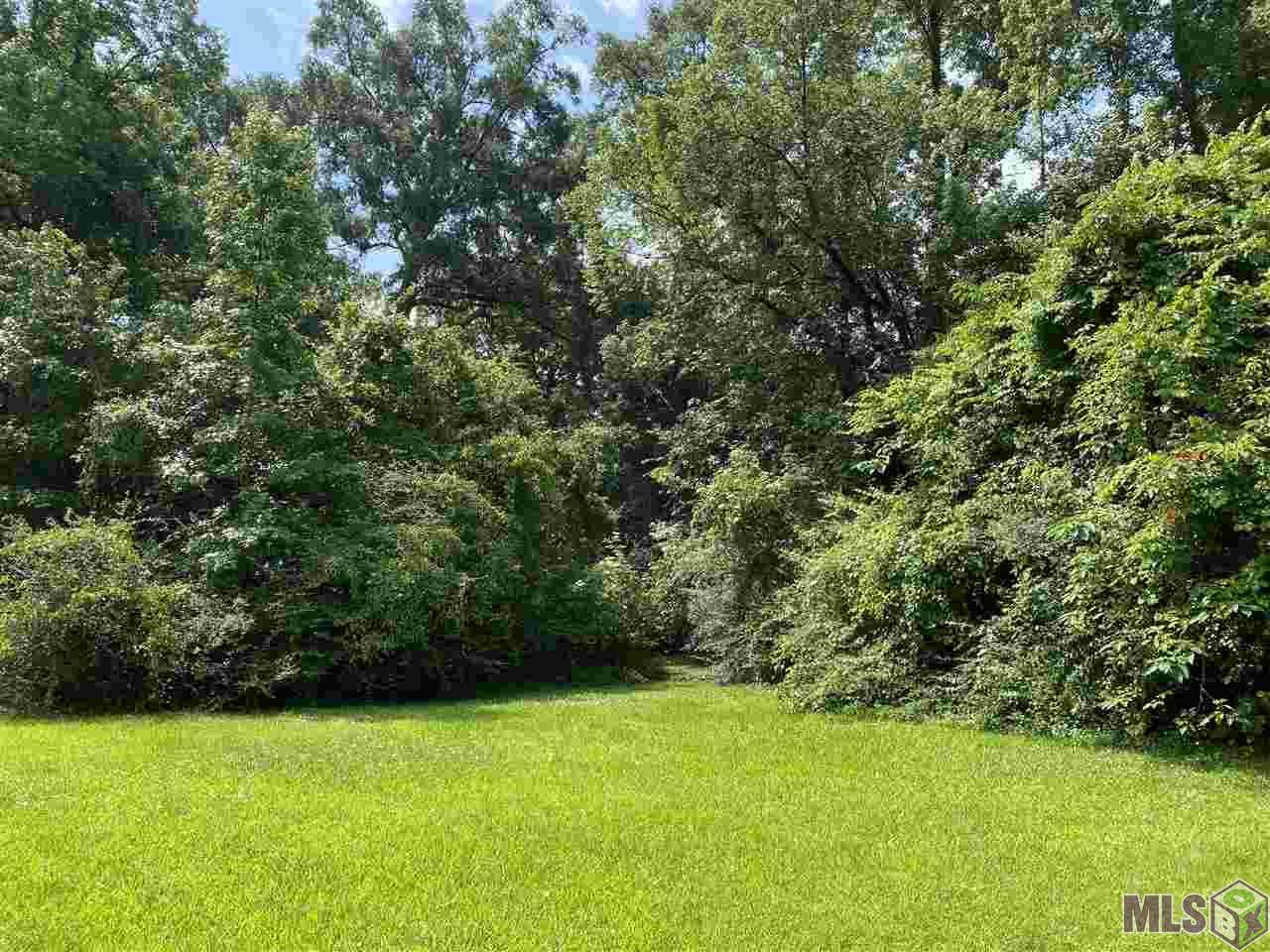 244 Magnolia Wood Ave - Photo 1
