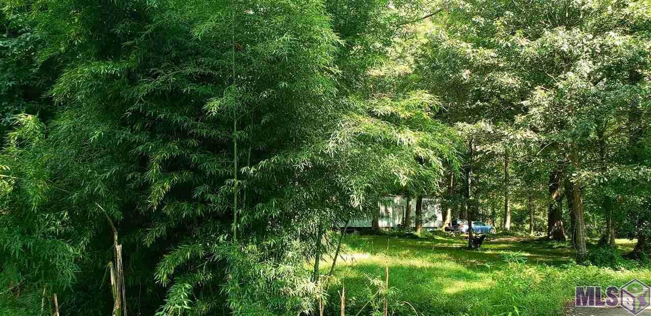 10775 Shady Grove Rd - Photo 1