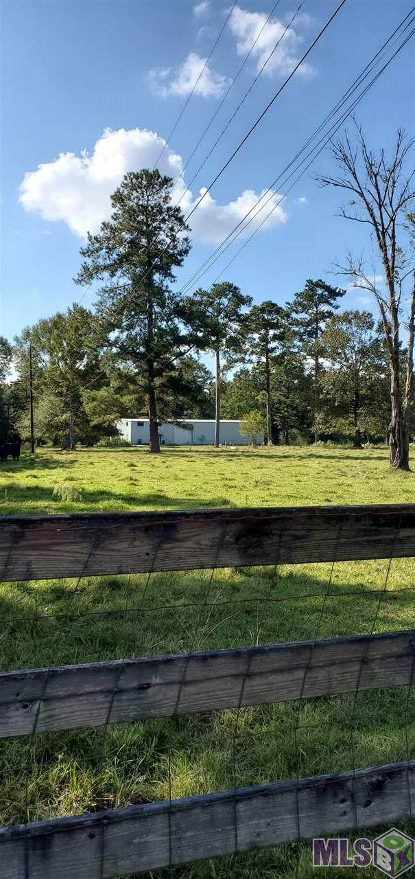 33202 Nancy Dr, Walker, LA 70785 (#2020016331) :: Darren James & Associates powered by eXp Realty