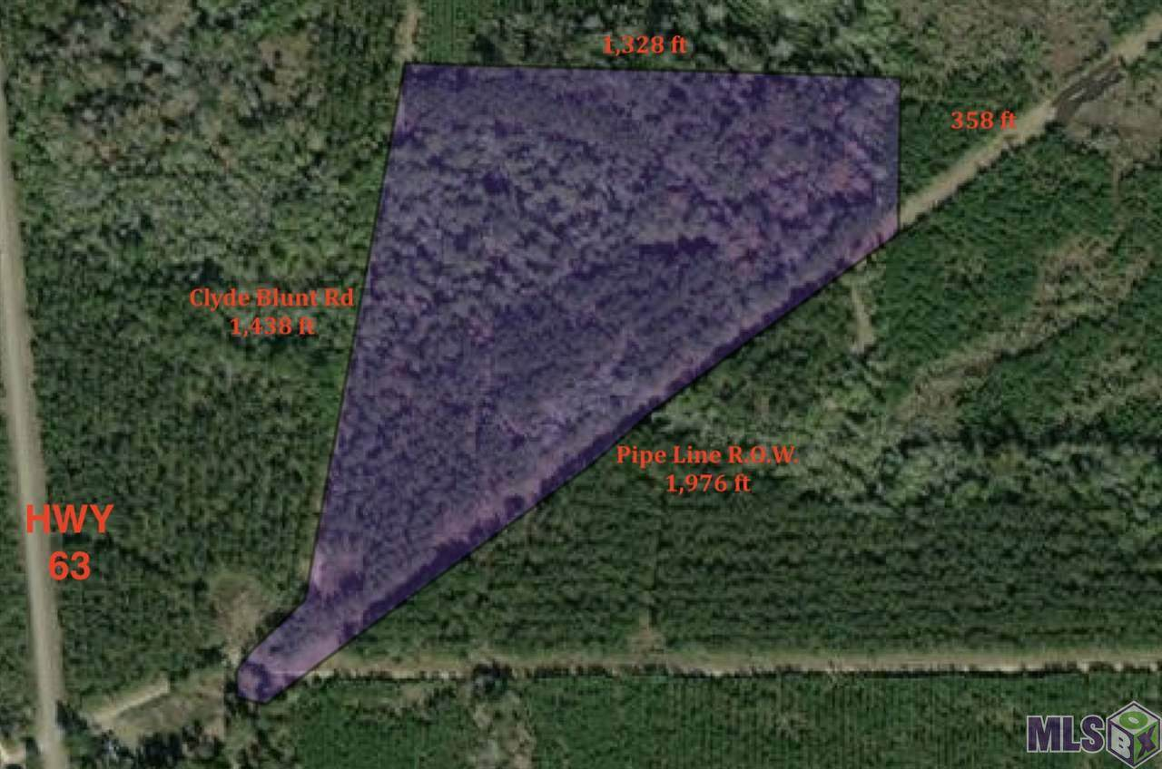 0 Clyde Blount Rd - Photo 1