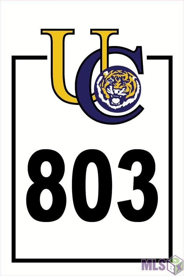 2217 Thomas Boyd Dr, Baton Rouge, LA 70810 (#2021003032) :: The W Group