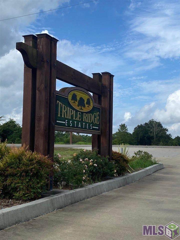 TBD Triple Ridge Blvd - Photo 1