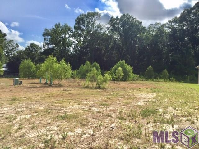 14053 Sleepy Hollow Dr, Prairieville, LA 70769 (#2018007242) :: The W Group with Berkshire Hathaway HomeServices United Properties