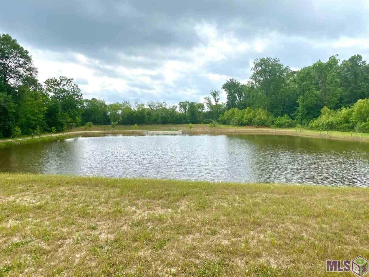 7109 Kimble Pond Ct - Photo 1