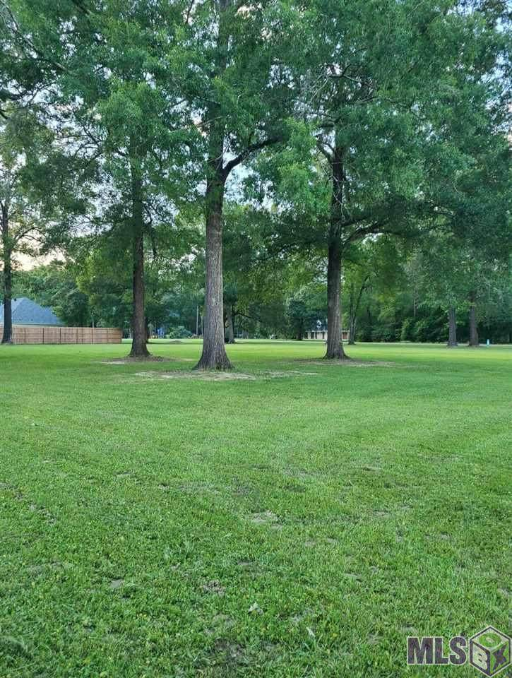 18030 Frenchtown Acres Dr - Photo 1