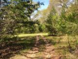 (+/-80 acres) TBD Sunnyside Rd - Photo 1