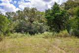 TBD (163.6 Acres) County Road 402 - Photo 17
