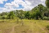 TBD (163.6 Acres) County Road 402 - Photo 22
