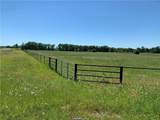6925 Fm 1372 Road - Photo 3