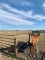 TBD 34.56 Acres County Road 272 - Photo 1