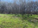 (+/-20 acres) TBD 485 Farm To Market Road - Photo 16