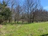 (+/-20 acres) TBD 485 Farm To Market Road - Photo 17
