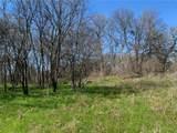 (+/-20 acres) TBD 485 Farm To Market Road - Photo 19