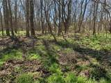 (+/-20 acres) TBD 485 Farm To Market Road - Photo 21