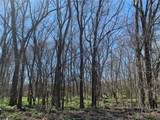 (+/-20 acres) TBD 485 Farm To Market Road - Photo 22