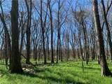 (+/-20 acres) TBD 485 Farm To Market Road - Photo 23