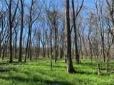 (+/-20 acres) TBD 485 Farm To Market Road - Photo 24