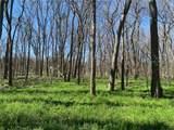 (+/-20 acres) TBD 485 Farm To Market Road - Photo 25